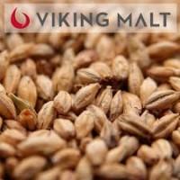 Malte Viking Pale Ale Saca 25 kg
