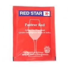 FERMENTO DE VINHO RED STAR PASTEUR RED (Premier Rouge) - VALBIER